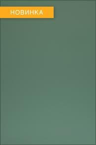 Фасад с пластиком FENIX  NTM 0773
